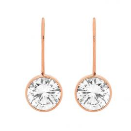Ellani Rose Plated Stainless Steel CZ Hook Earrings image