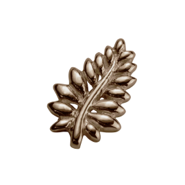 Stow 9ct Rose NZ Fern Charm image